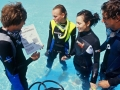Divemaster internship Europe Divemasters Skills set