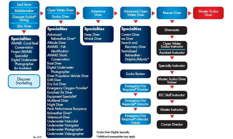 PADI-Professional-Flow-Chart Tenerife, Canary Islands, PADI Divemaster internship