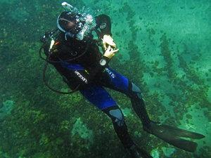 PADI Advanced Diver form Germany