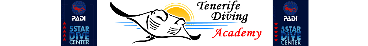 PADI Divemaster internship -Diving Tenerife – Divemaster internships  – Free Divemaster internships