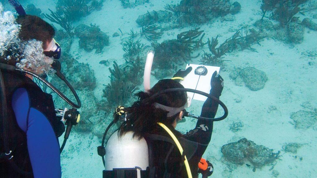 PADI underwater-navigator